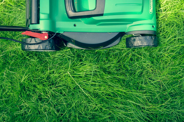 seo for local lawn care